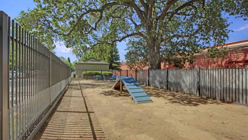 Bark Park and Dog Run |  Apartments in Sacramento CA  |  Broadleaf Apartments