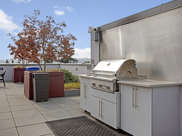 Rooftop Barbecue Stations