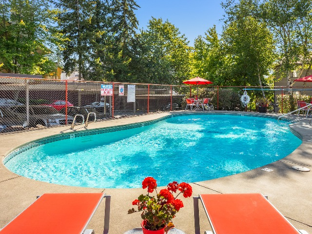 Sparkling Pool and Deck Area
