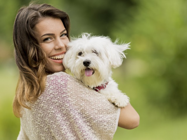 Image of We Love Pets!* for Mountainside Apartments
