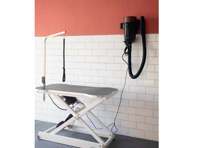 Image of Dog spa with wash and dry station for ARCOS