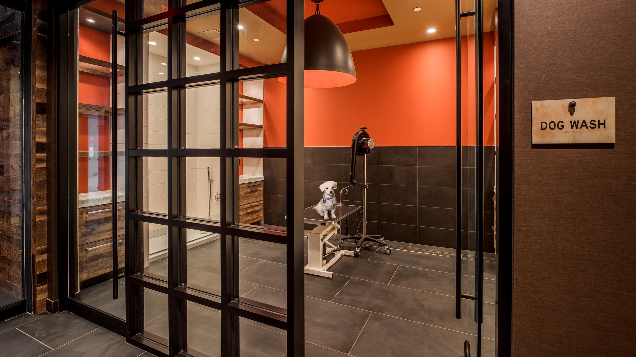 Image of Dog-washing Station for Eastside Bond