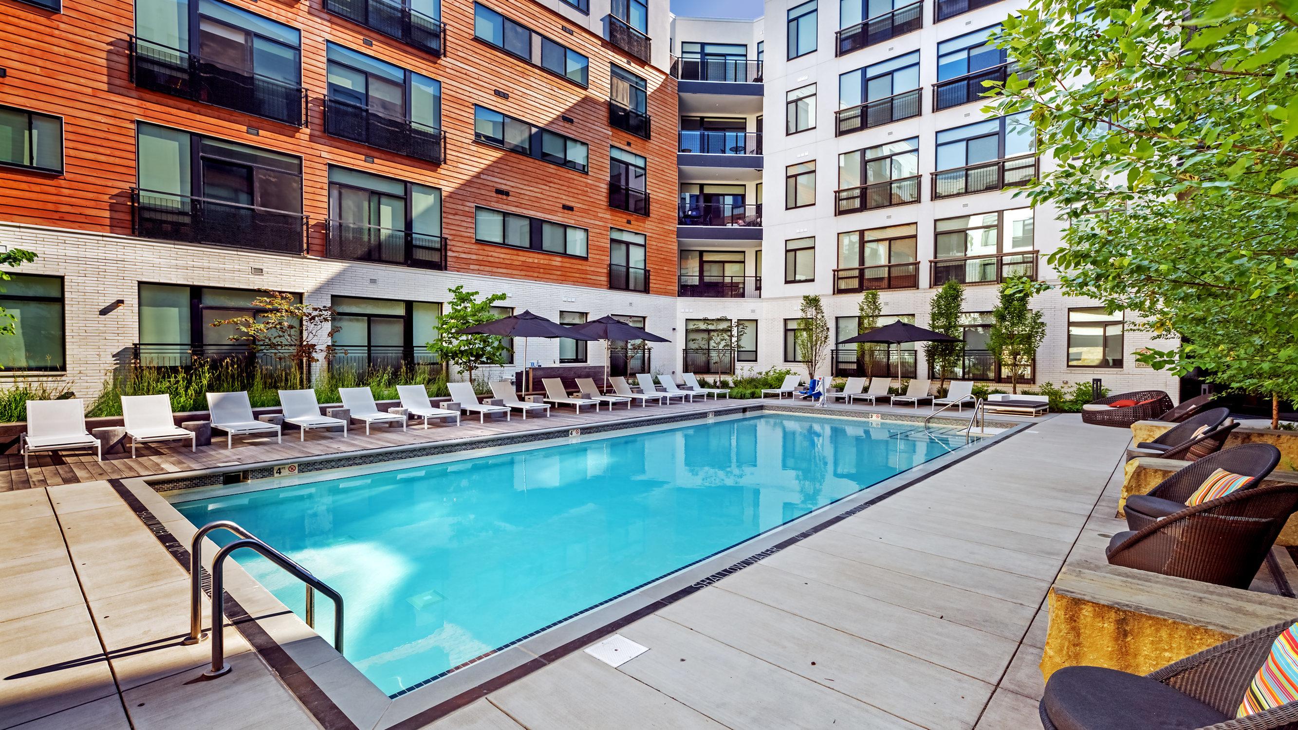 Image of Resort-style Saltwater Swimming Pool for Eastside Bond