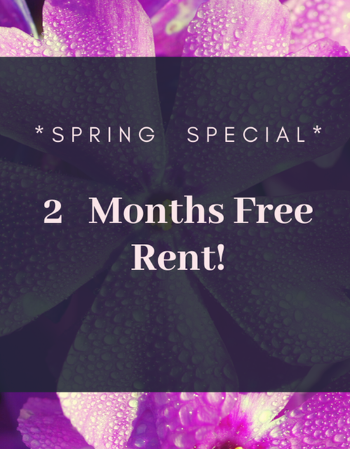 Spring Special- 2 Months free