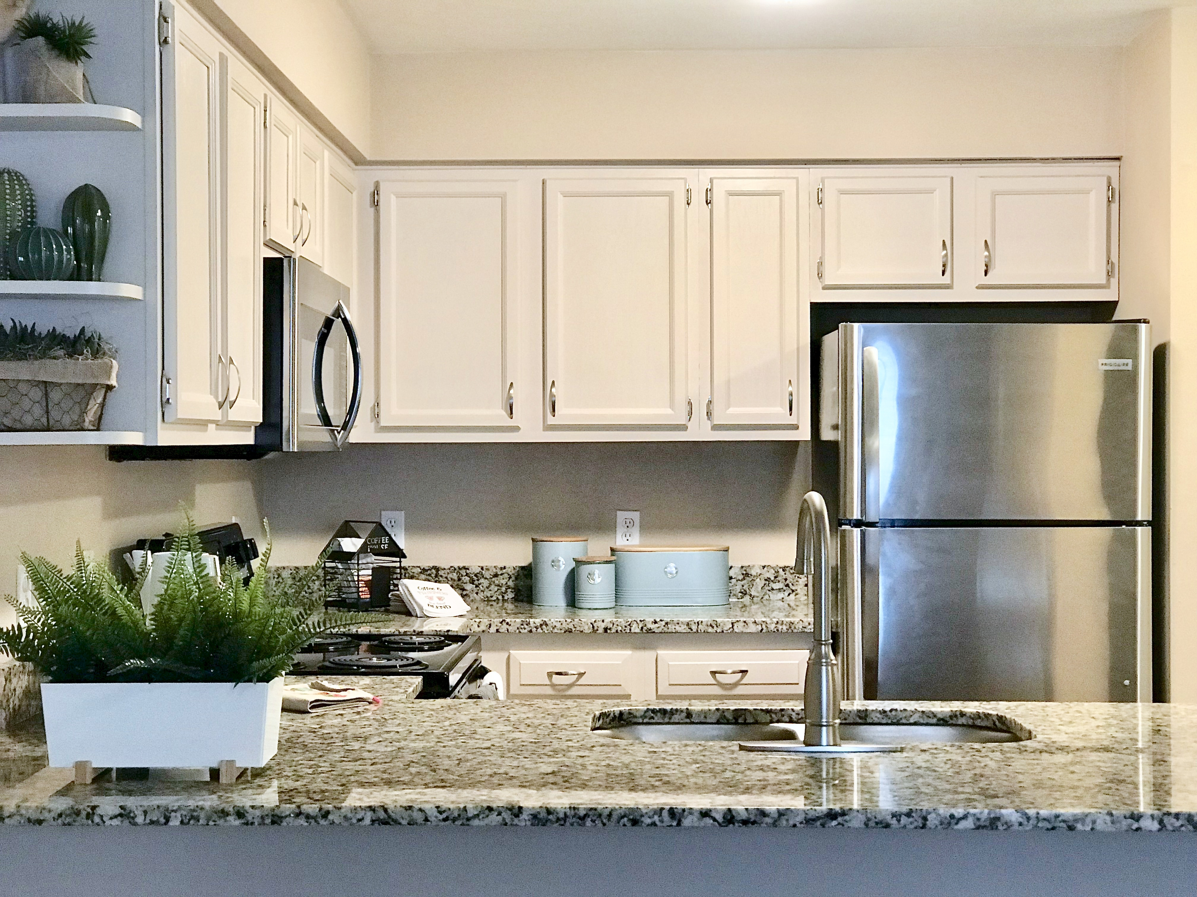Image of Stainless Steel Appliances for SQ Johnson City
