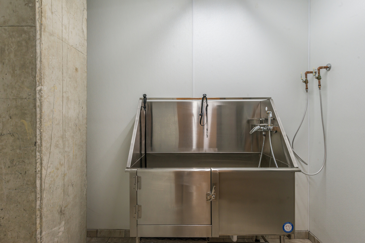 Image of Pet Washing Station for Latitude