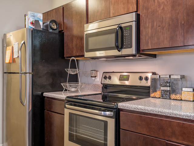 Stainless Steel & Black Appliances
