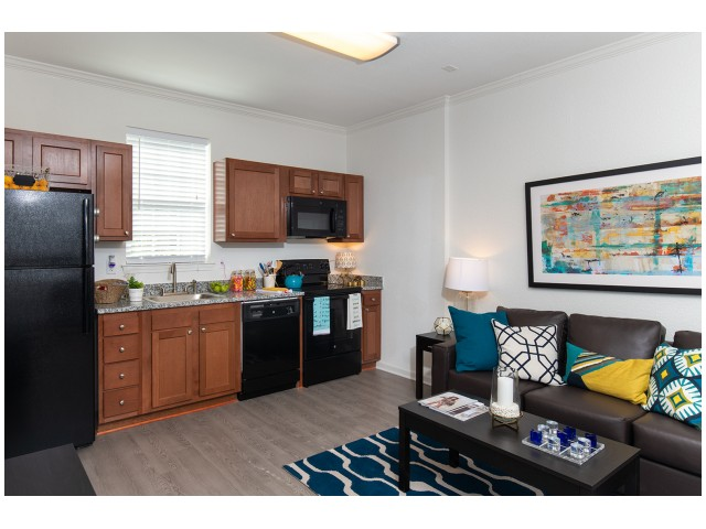 Appliances | Kitchen | Flatts at South Campus | 1,  2, 3, & 4 Bedroom Apartments Oxford MS