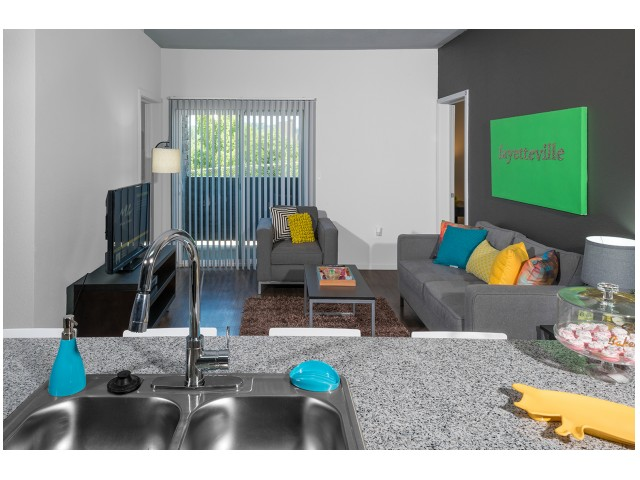"""48\"""" Flat Screen TV  