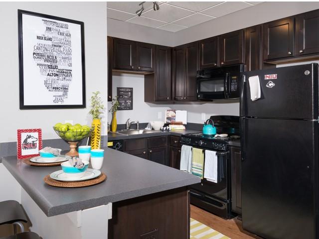 Modern Kitchen | University Plaza  | Student Apartments in DeKalb IL