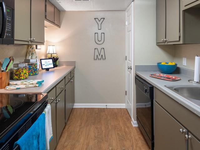 Black-on-Black Appliances | Modern Kitchen | Raiders Walk | TTU Off Campus Housing