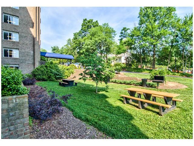 Community Picnic Tables & BBQ Grills | University Apartments - Chapel Hill | Chapel Hill NC Apartments