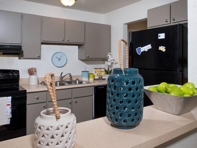 Black-on-Black Appliances | Kitchen | University Hills | Apartments Toledo Ohio