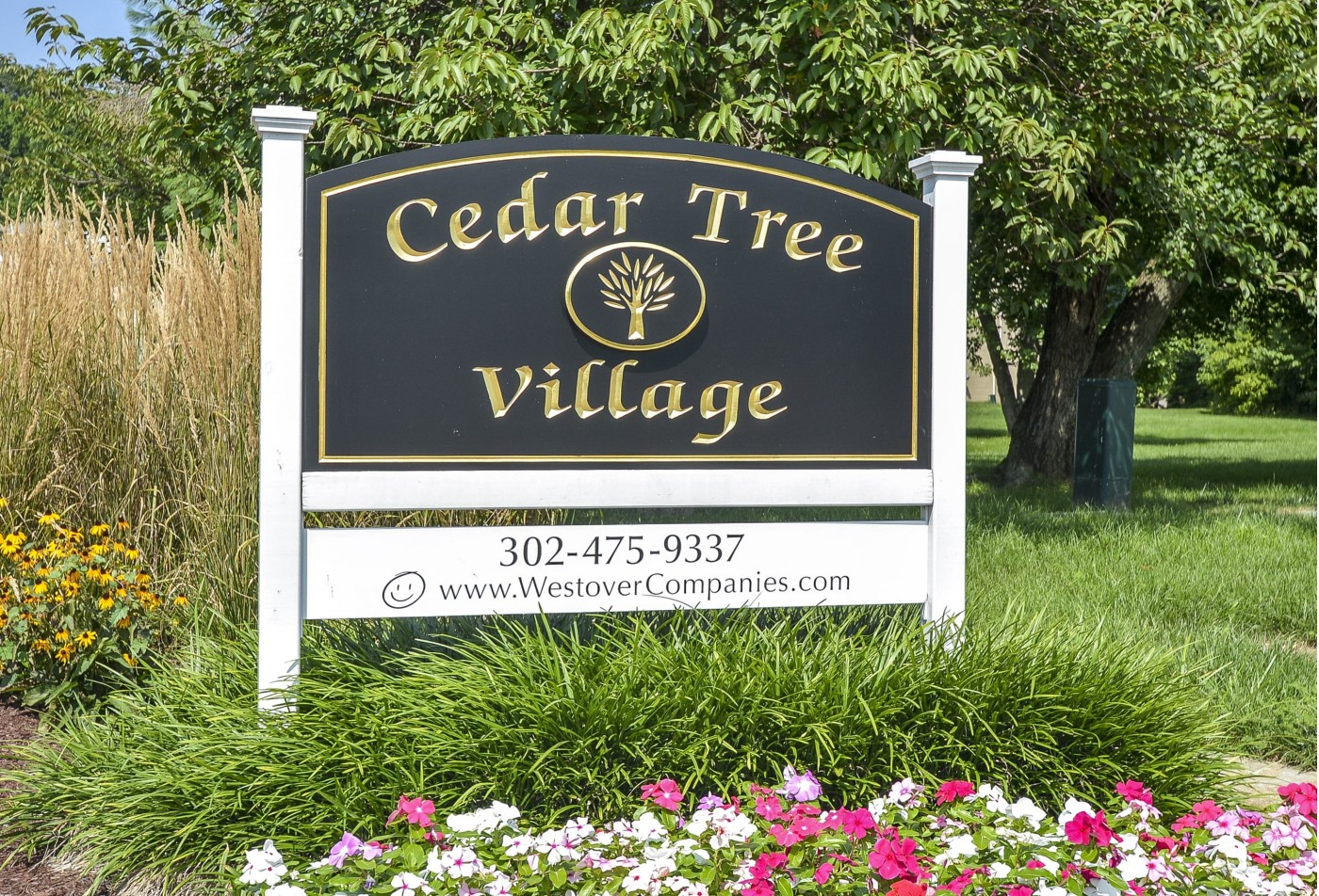 Apartments in Wilmington, DE | Cedar Tree Apartments