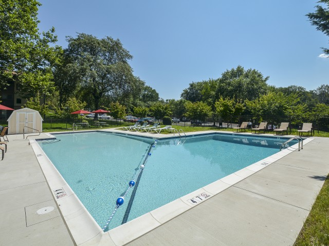 Fox Run Swimming Pool with Triangle Shape   Warminster Apartments
