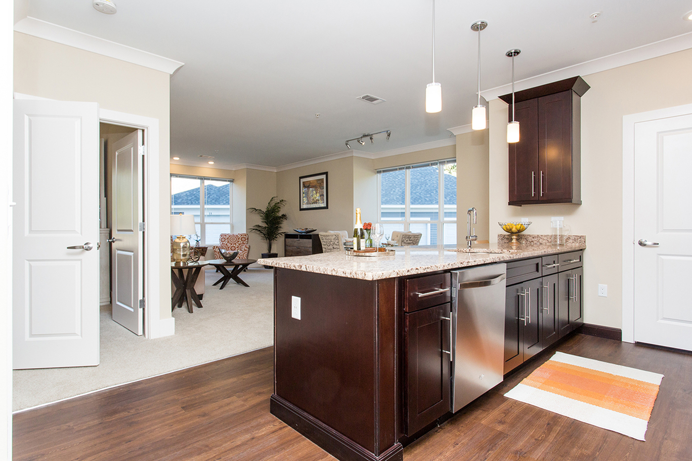 Modern Kitchen and Living Area