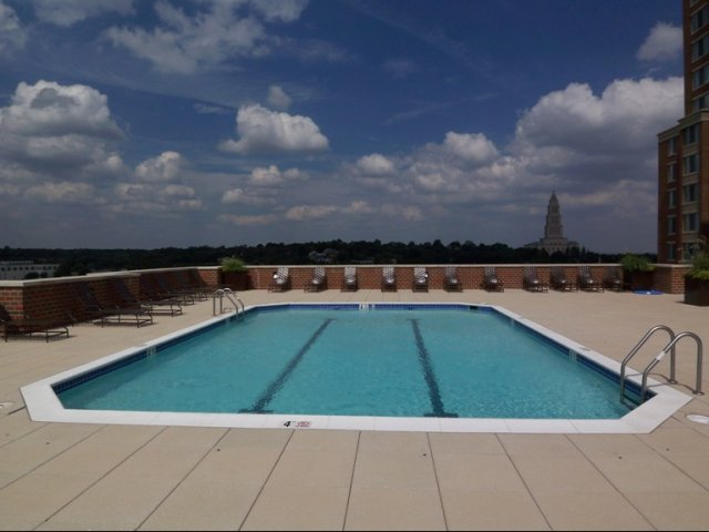 Image of Rooftop Swimming Pool and Sundeck for Meridian at Eisenhower