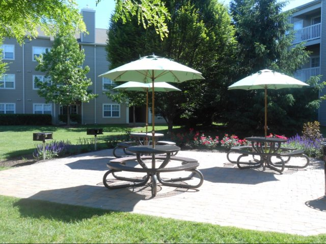 Image of Picnic patios with grilling stations for Reserve at Ballenger Creek