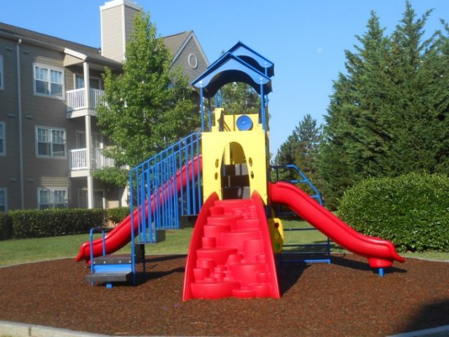 Image of Playgrounds for Reserve at Ballenger Creek