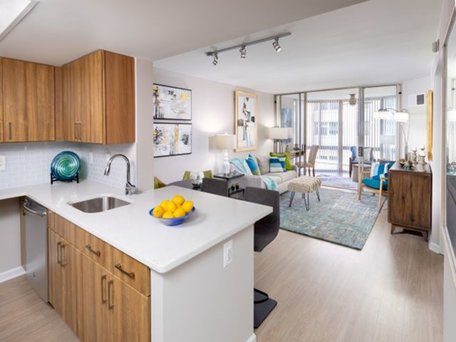 Luxurious Living Area with Sunroom | Luxury Apartments In Arlington VA | Meridian at Ballston Commons
