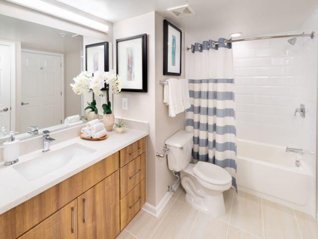 Newly Renovate Bathroom