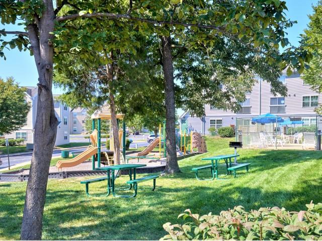BBQ Area and Playground   Evans Ridge Apartments   Affordable Apartments Leesburg VA