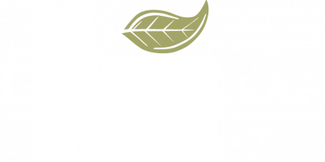 Green Leaf Arts