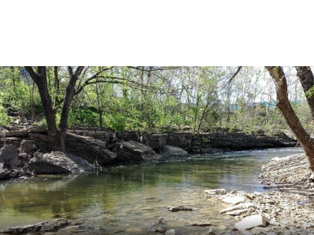 View of Indian Creek with the banks of the river showing stones and trees with green foliage.