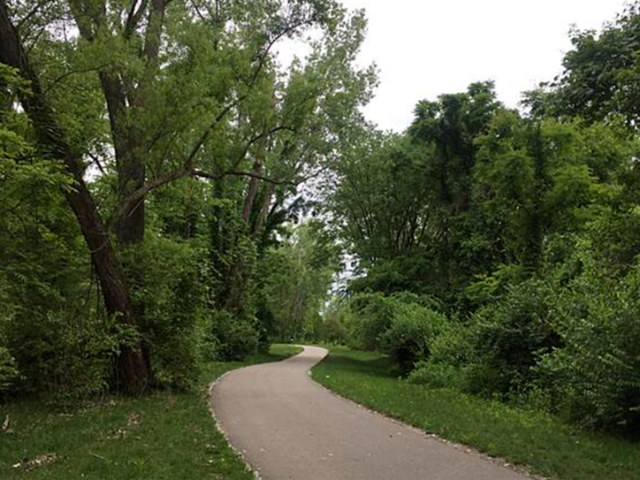 paved bike trail with green grass and trees lining both sides