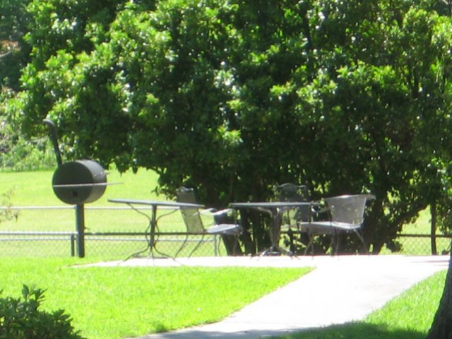 Image of Picnic & Barbecue Facilities for Bayou Shadows Apartment Homes