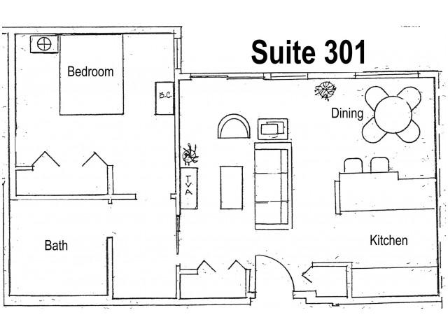 Suite 301