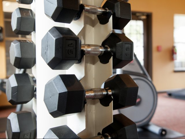Image of Free Weights in Fitness Center for Trails of Valley Ranch (Moved to RC)