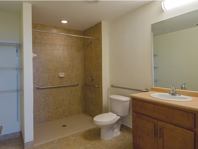 Bathroom with handicap accessible shower, toilet, sink with cabinet, mirror, and shelving