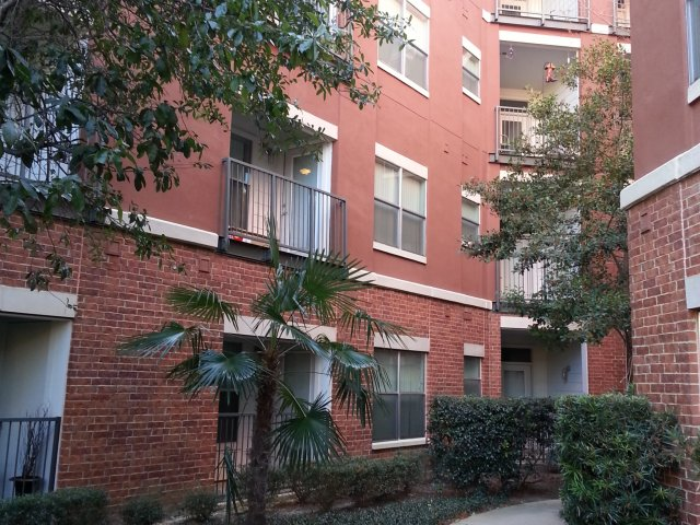 Apartments For Rent In Dallas TX 5225 Maple Avenue