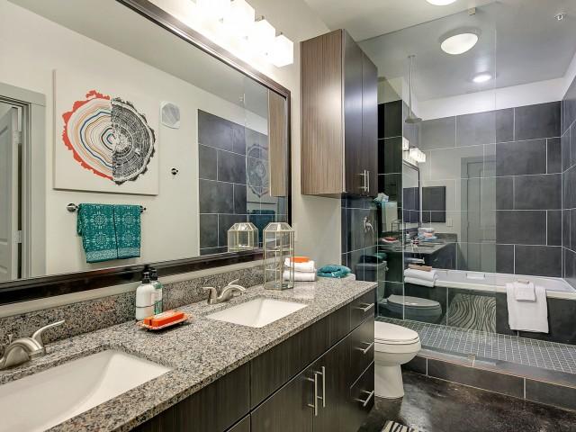 Luxurious Master Bathroom   Apartment in Dallas, TX   Alexan West Dallas