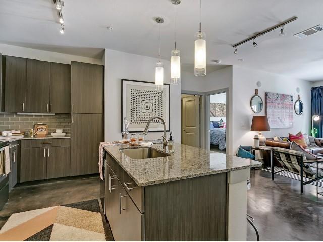 Elegant Kitchen   Apartments in Dallas, TX   Alexan West Dallas