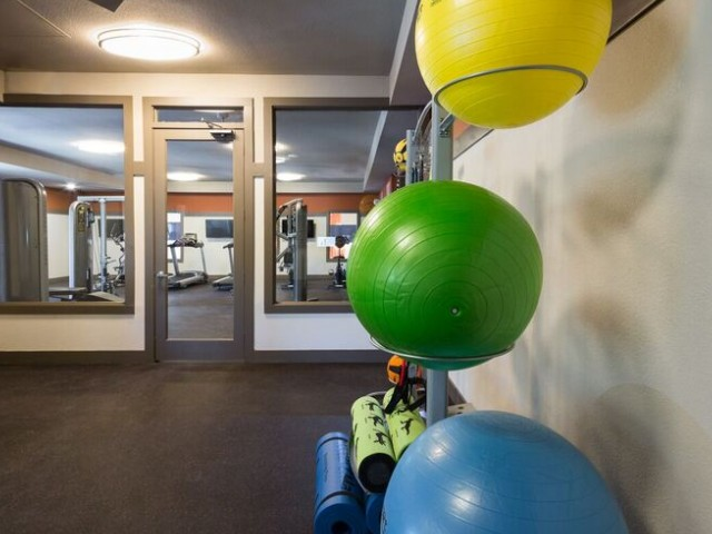Fitness center open 24/7 and TV screen and exercise balls
