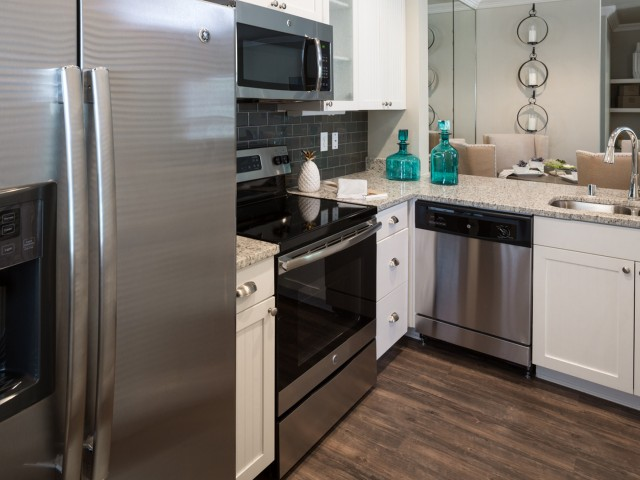 Image of Stainless Steel Appliances* for Grapevine Twenty Four 99