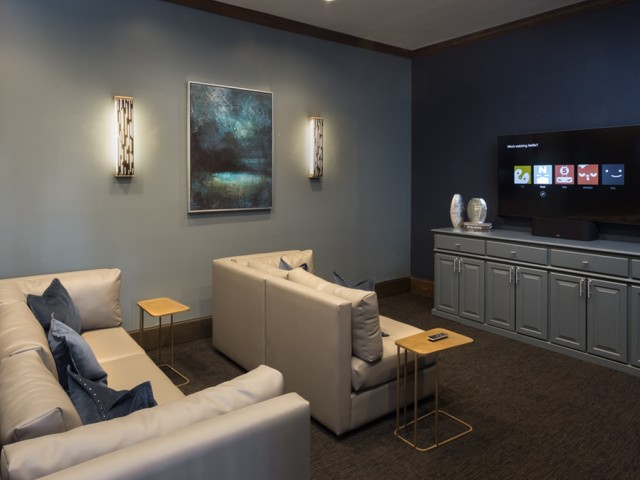 Image of Media Room for Grapevine Twenty Four 99