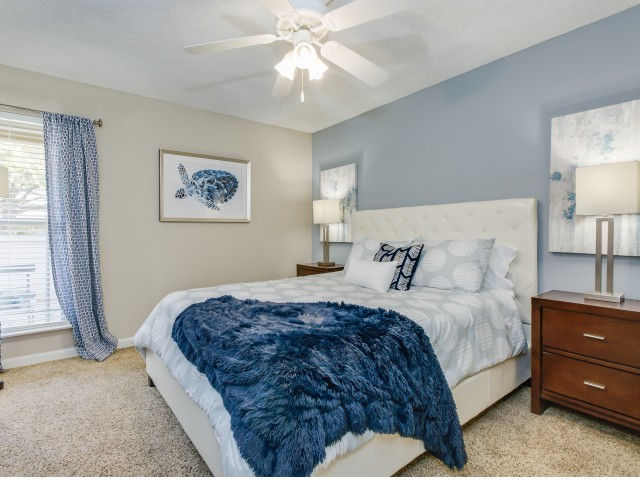large bedroom with ceiling fan, two tone paint and large window