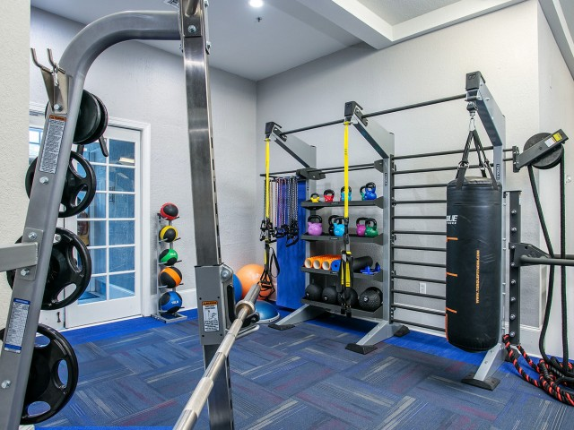 Alvista Metrowest Orlando Florida fitness center with a TRX training center