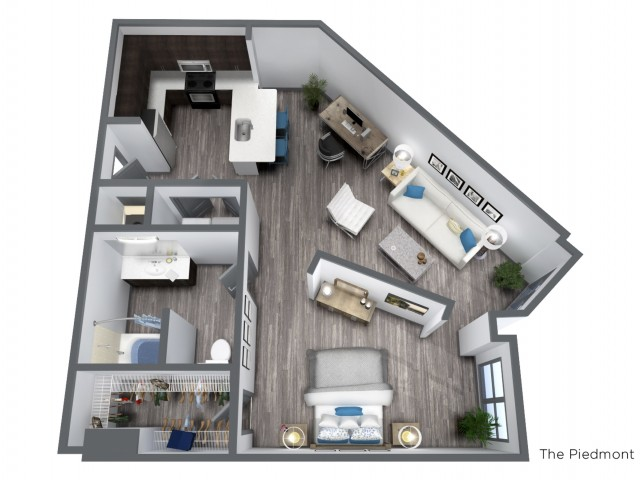 The Piedmont - 792 SQFT