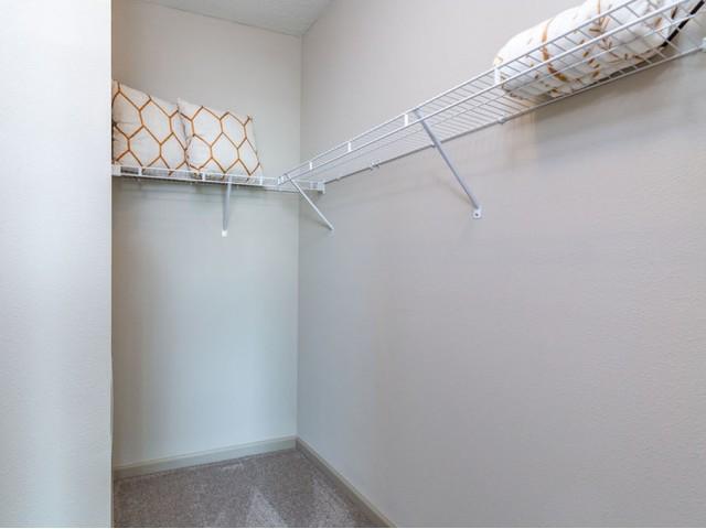 Tomoka Pointe Apartments Daytona Beach Florida master bedroom closet with carpeted floor, wire rack shelf