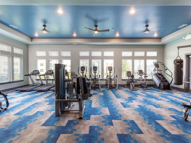 Tomoka Pointe Apartments Daytona Beach Florida fitness center with decorative carpeted flooring, strength and cardio equipment, ceiling fans with lights, eleven floor-to-ceiling windows