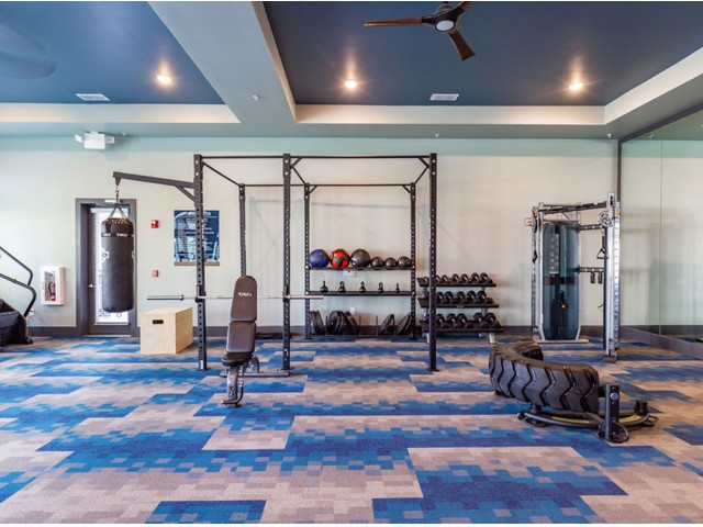 Tomoka Pointe Apartments Daytona Beach Florida fitness center with decorative carpet, TRX center with free weights, weighted balls, punching bag, tire lifting station, ceiling fan with light, mirrors