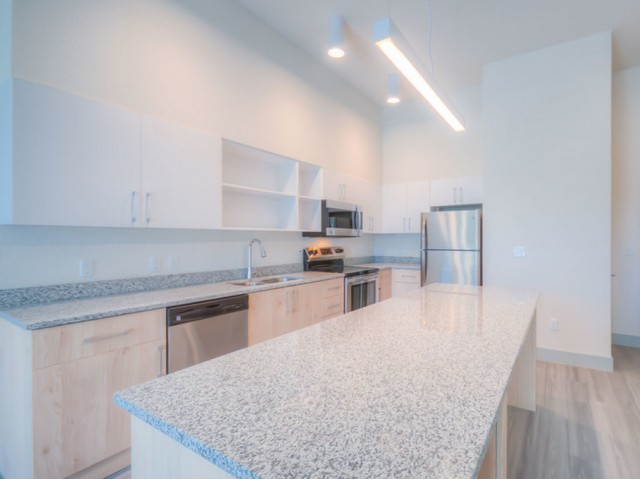Image of Quartz Counters in Kitchen & Bath for Lofts at South Lake