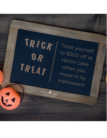 No tricks, all treats here. Move in by Halloween & receive $500 off your first full month's rent!