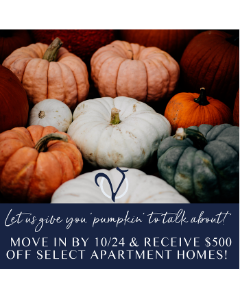Let us give you pumpkin to talk about! Move in by 10/24 to receive $500 off select apartment homes!