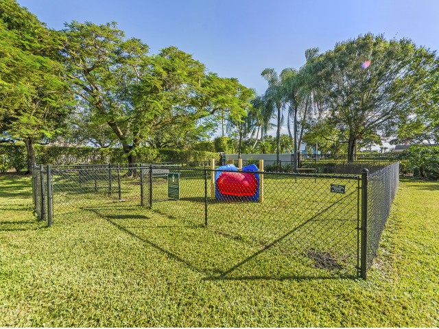 Fenced dog park with obstacles including a tunnel and jumps