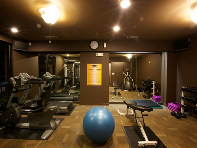 State-of-the-Art Fitness Center open 24/7 with weights and Exercise balls | Apartments Rockwall TX | Rockwall Commons